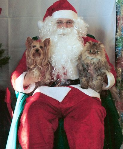 Honeybear and Santa smaller.jpg